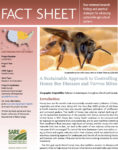 Controlling Honey Bee Diseases Fact Sheet Cover