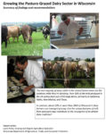 Cover image of dairy grazing publication