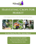 guide on harvesting crop for market