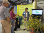 sunn hemp research