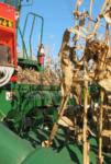 ASA cover crop webinar series